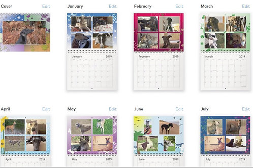 Retired greyhound owners Callander volume 2