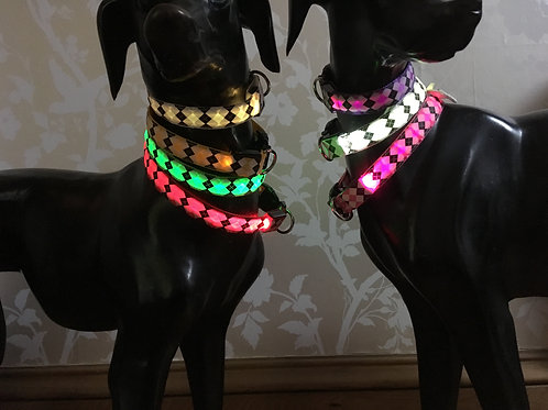 Battery powered Light up safety collar