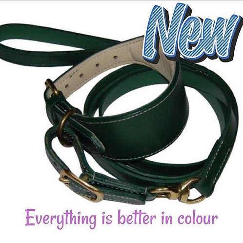 Padded leather swivel collar in green