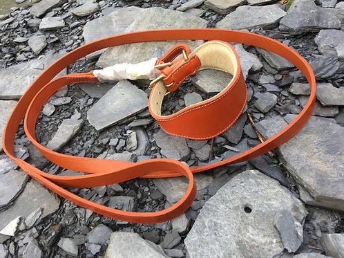 Padded leather swivel lead in burnt orange