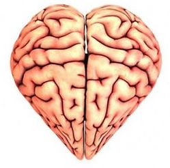cerebro_heart.JPG