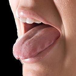 tongue and cheek transparent.png