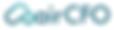 AirCFO-Logo-white bkgrd.PNG