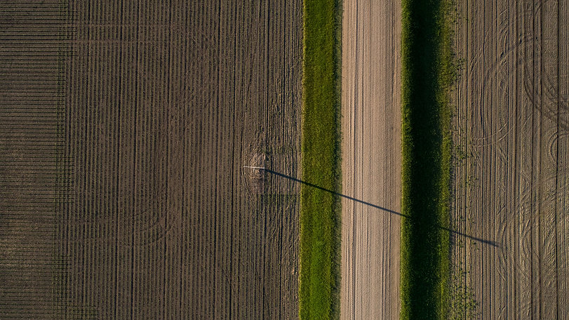 william-dehoogh-691320-unsplash.jpg