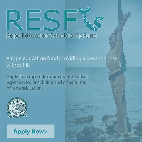RESF graphic 2020-no website.jpg