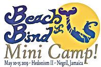 BB42019 mini camp logo.jpg