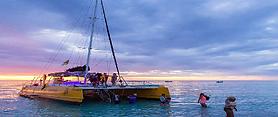 www_islandtours.png