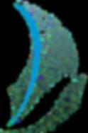 Logo Ubá_edited.png