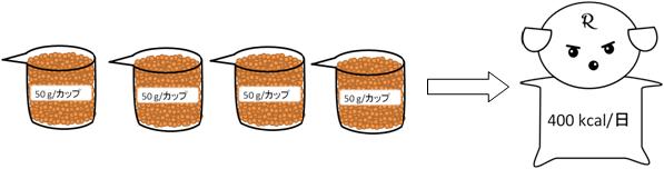 4カップ食べれる!食べきれる!?