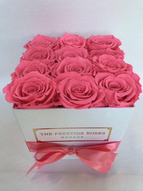 the prestige roses square box timeless roses baby pink