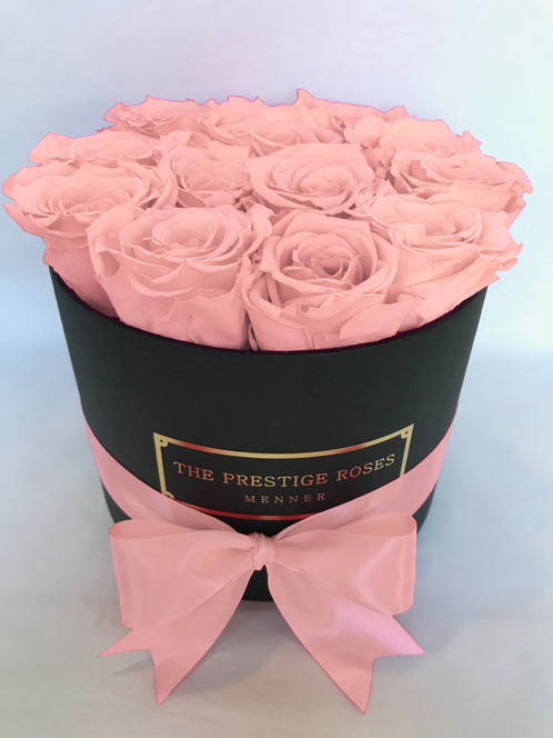 the prestige roses small box timeless roses baby pink