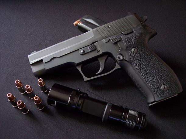 Firearms & TacticsWIX.jpg