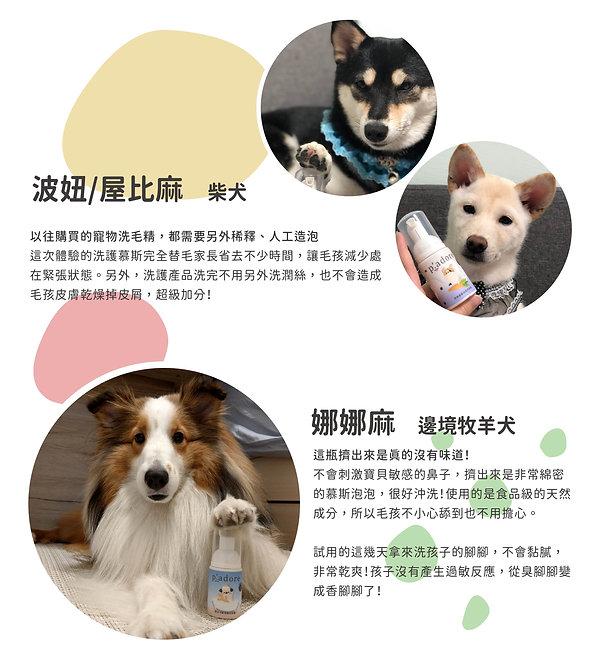 嘖嘖募資計畫_毛孩試用分享_工作區域 1-01.jpg