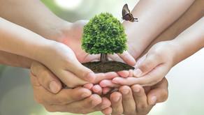 New Fertilizers and Pesticides