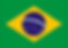 brasiliens-flagga.png