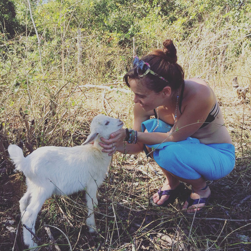Baby Goat Love