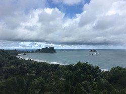Jungle and Ocean View
