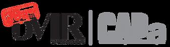 Logo_DEVIRCAPA_25anos.png