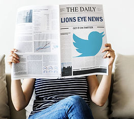 LIons Eye News on Twitter.jpg
