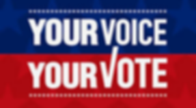 Your Vote your voice.png