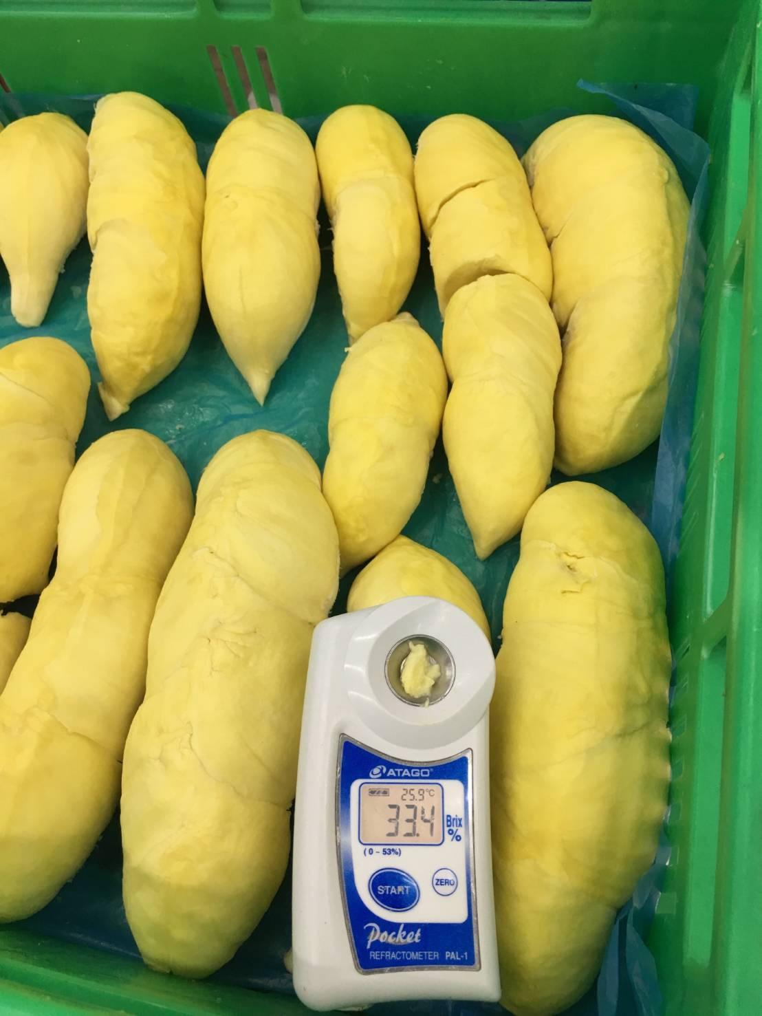 durian pulp.jpg