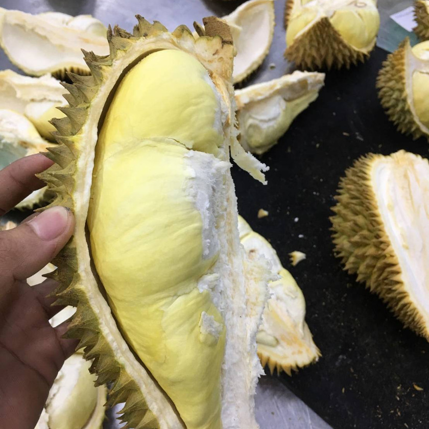 durian pulp with shell.jpg