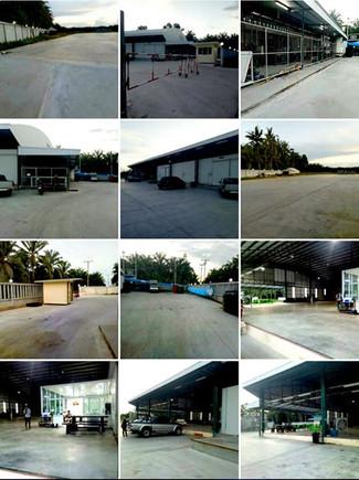 Thai Mornthong Durian Factory