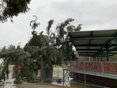 03-T03: Sturmschaden