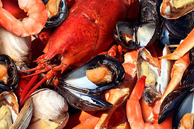 Shellfish plate of crustacean seafood as