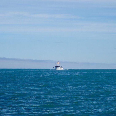 Hitchhiker's Guide to the Bering Sea