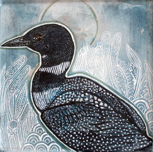 Evening Loon