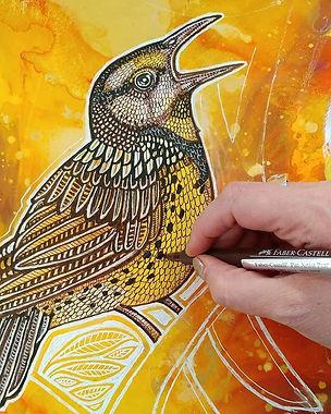 Bird drawing by Lynnette Shelley