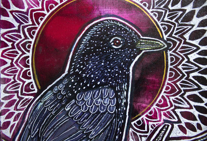 darling-starling-12.jpg