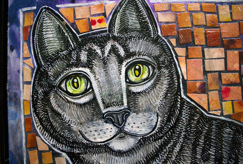 Curiosity and the Cat