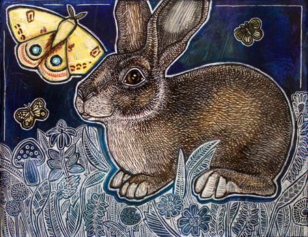 Rabbit and Moth