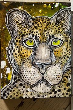Watching Leopard