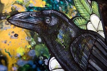 Alala (Hawaiian Crow)