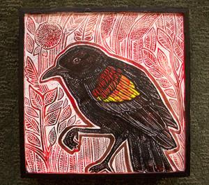 Visiting Blackbird