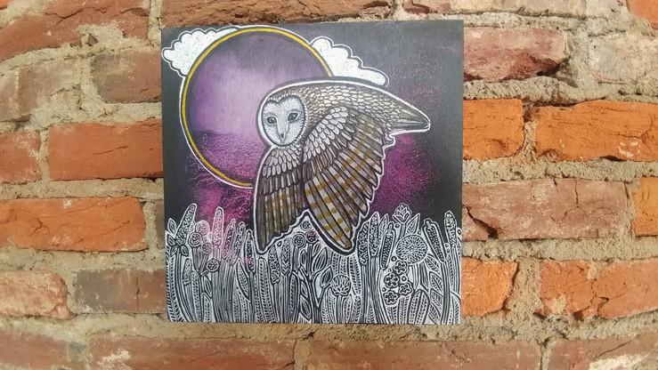 Summer Night Owl