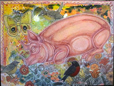 Dreaming Pig