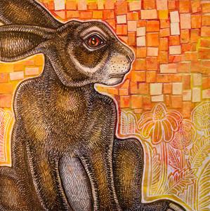 Watching Rabbit