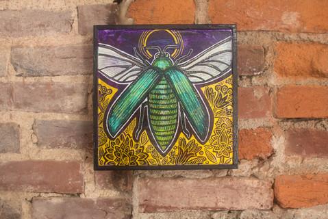 Green Jewel Beetle