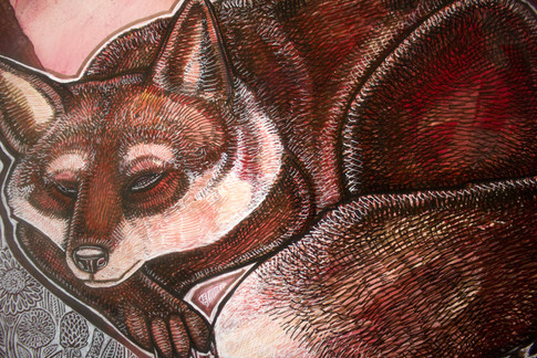 Sleeping Summer Fox