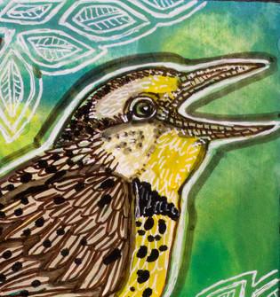 Meadowlark Singing