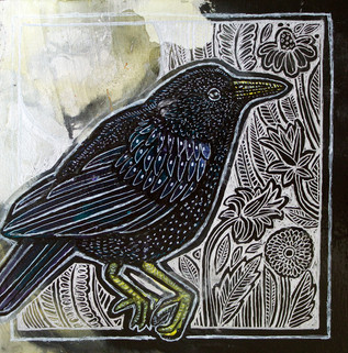 Starling On Silver