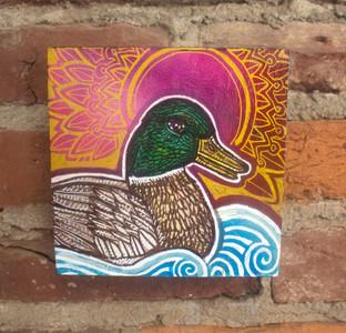Good Morning, Duck