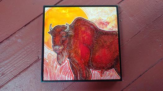 bison-at-sunrise-1.jpg