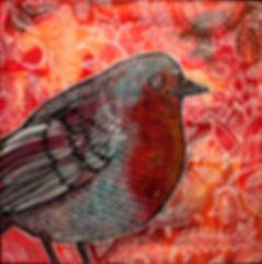 robin-red-breast.jpg