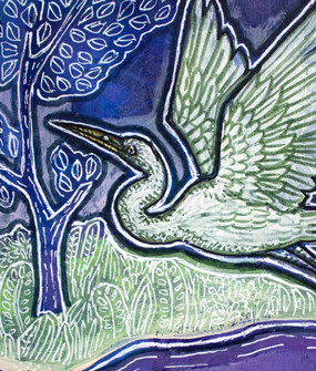 Night Egret