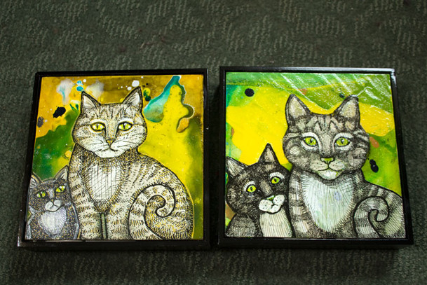 Two Cats and Two More Cats